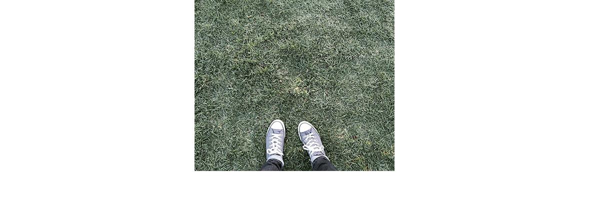Grass Converse